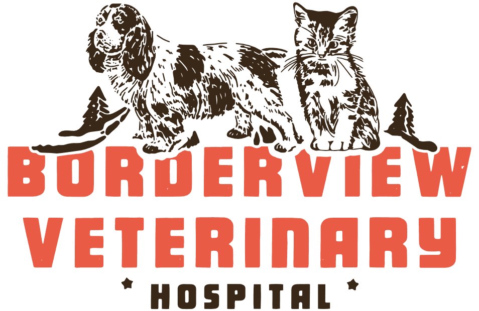 Borderview Veterinary Hospital