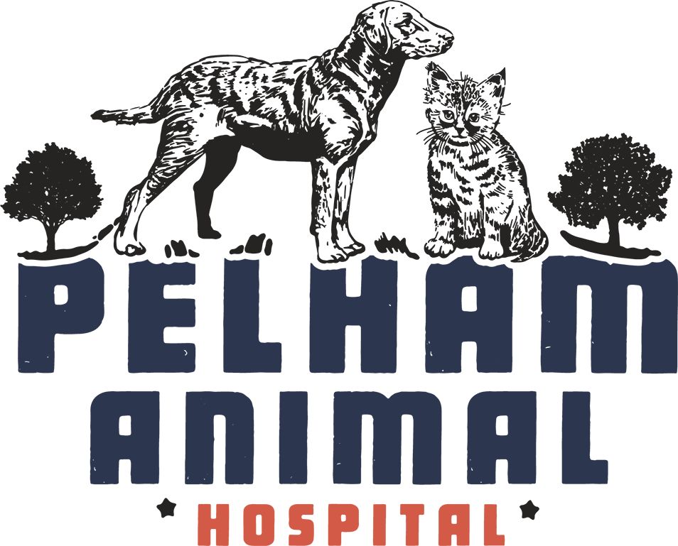 Pelham Animal Hospital